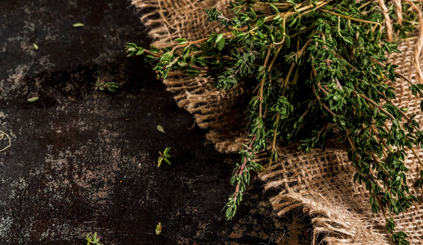 Bela-luz thyme: the perfect salt substitute
