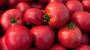 Malinowy ou tomate framboesa
