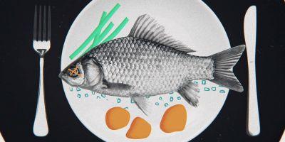 Peixe num prato