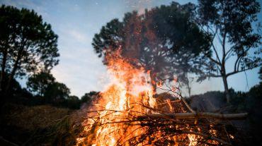 Agir contra os incêndios florestais