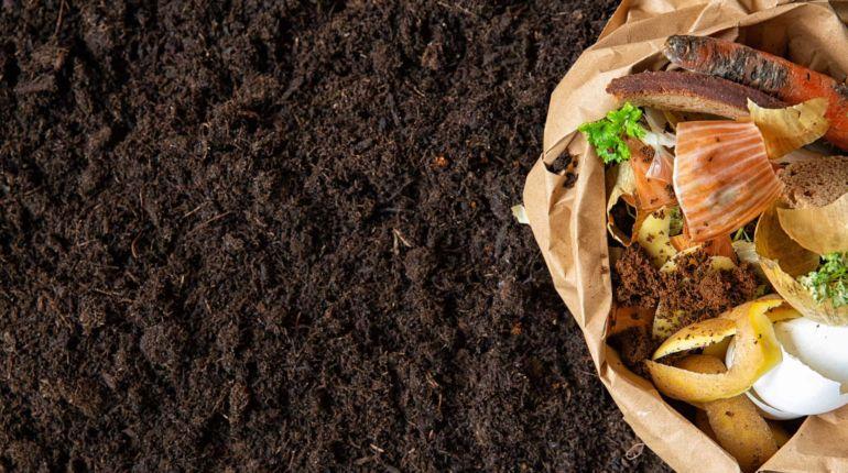 Guia para fazer compostagem em casa