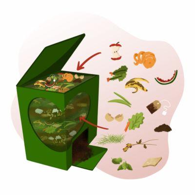 Compostagem em casa: resíduos verdes