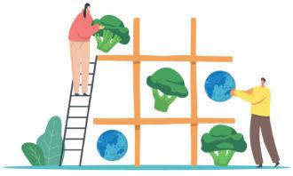 Escolhas alimentares equilibradas